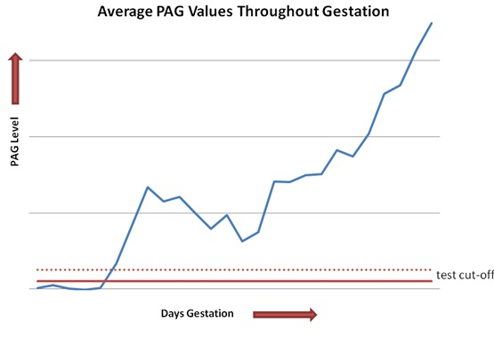 Average PAG Values Throughout Pregnancy